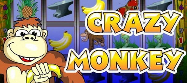 Игровой автомат crazy monkey играть онлайн